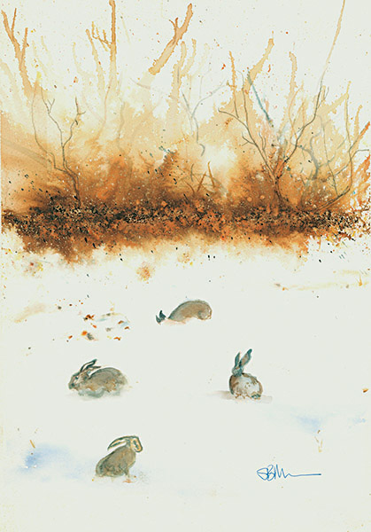 Snow Hares watercolour by Suzy Billing-Mountain